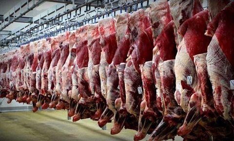 تخصيص ارز نيمايي براي واردات گوشت