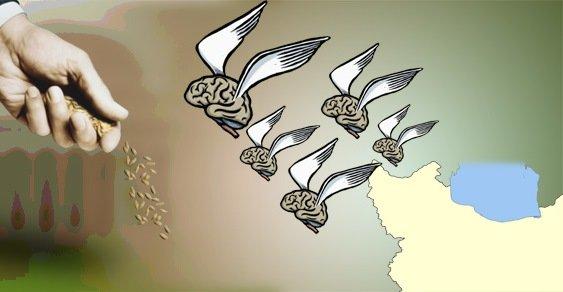 صادرات هوش ايراني!