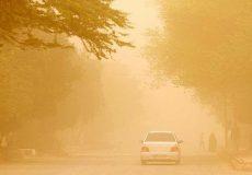 کاهش ۵۰ درصدی شدت ریزگردها کمک بزرگی به مردم سیستان است