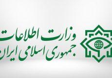 ضربه وزارت اطلاعات به اخلالگران سلامت مردم در خوزستان