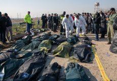 شناسایی هویت ۵۰ جانباخته حادثه سقوط هواپیمای اوکراینی