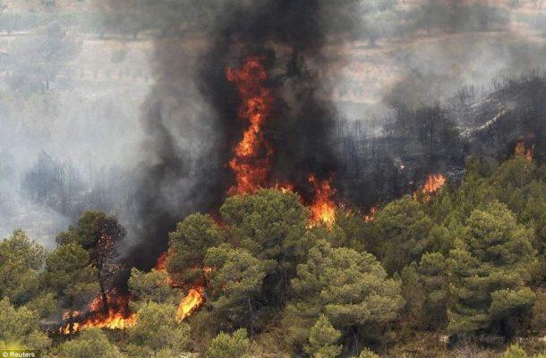 وقوع ۲۴۰ مورد آتشسوزی در ۱۱ استان کشور