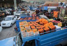 توزیع ۱۱۰۰ تن لیموترش احتکار شده در بازار با ورود دستگاه قضایی