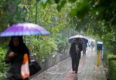 بارش پراکنده در شش استان/ کاهش دما تا ۱۰ درجه در شمال کشور