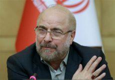 ایرادات آییننامه داخلی مجلس باعث نابسامانی قوای سهگانه شده است