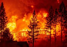 تخلیه نیم میلیون نفر از ایالت اورگان آمریکا در پی شدت گرفتن حریق